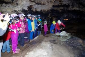 HöhlenwanderungAuf der Suche nach Collembolen im Hauptdom der Osterhöhle